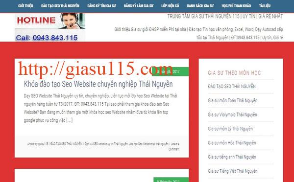 Website chính thức trung tam gia su thai nguyen 115